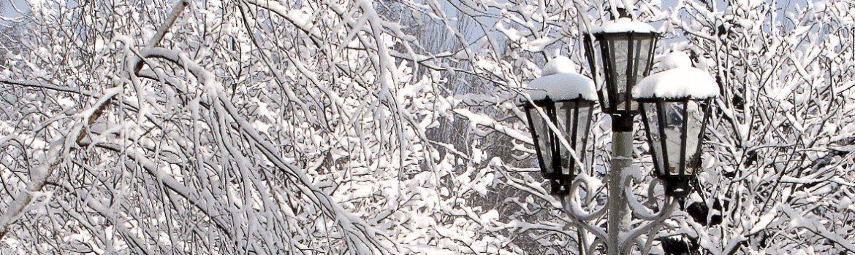 Зимний день-1170